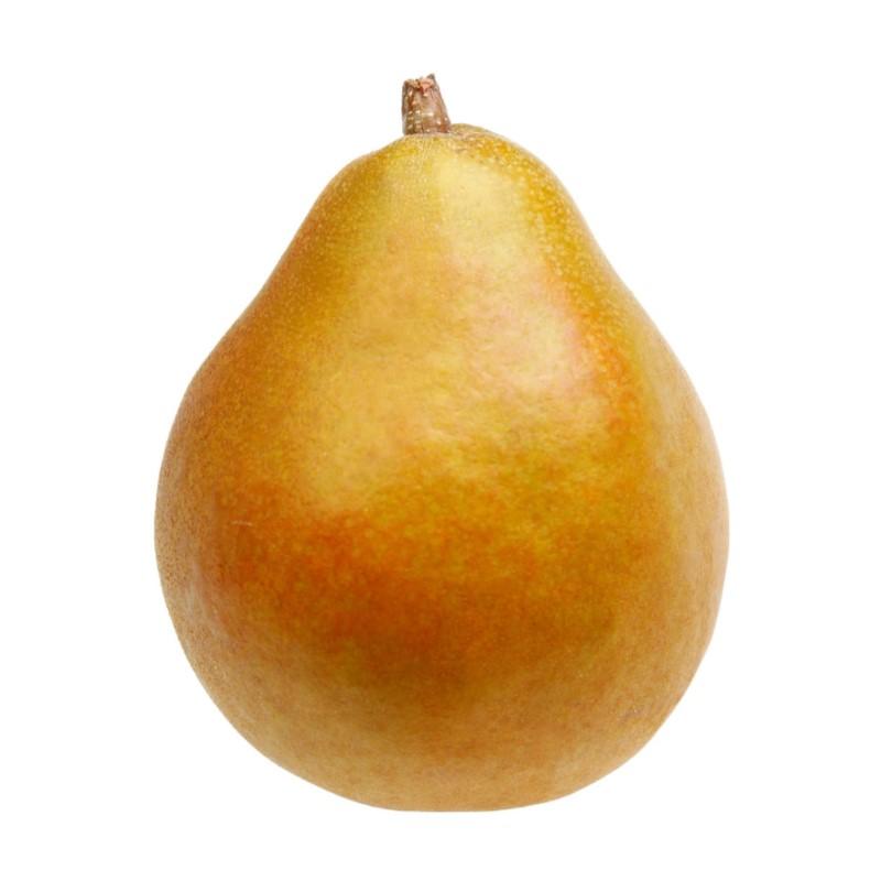 taylors gold pear