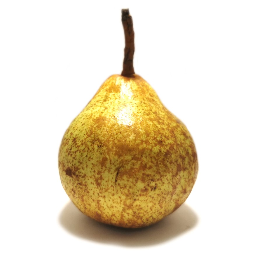 pear winternelis
